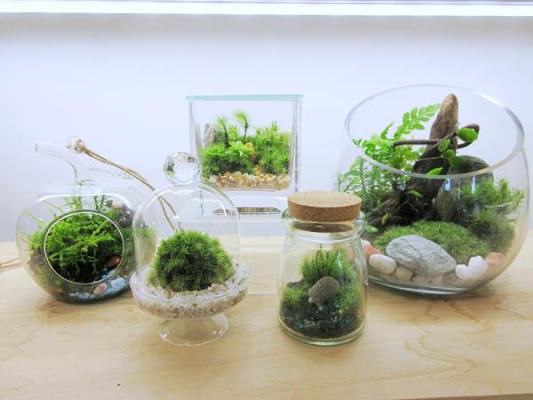 ハンギング型などお好きなデザインのガラス瓶を店内でお選びください。